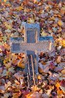 senosios Onuškio kapinės 6962