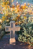 senosios Onuškio kapinės 6963