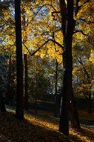 Trakų Vokės dvaro sodyba · Andrė parkas, ruduo 6852