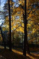 Trakų Vokės dvaro sodyba · Andrė parkas, ruduo 6853