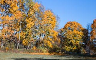 Trakų Vokės dvaro sodyba · Andrė parkas, ruduo 6856