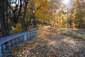 Trakų Vokės dvaro sodyba · Andrė parkas, baliustrada, ruduo 6861