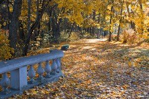 Trakų Vokės dvaro sodyba · Andrė parkas, baliustrada, ruduo 6862