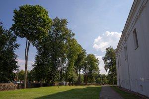 Veisiejų Šv. Jurgio bažnyčia · šventorius 4313
