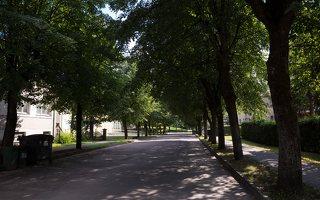 Veisiejai · Dariaus ir Girėno gatvė 4317