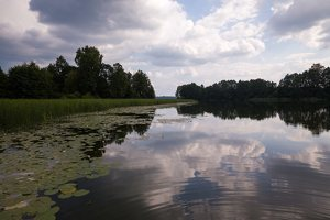 Veisiejų dvaro parkas · ežeras Ančia 4413