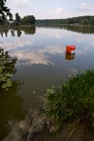 Veisiejai · ežeras Ančia 4441