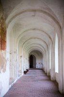 Tytuvėnai · bernardinų vienuolynas 1015