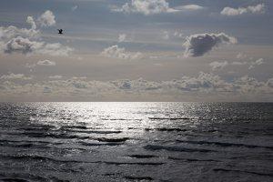 jūra, bangos, debesys 5242